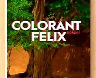 Colorant Félix de Destin Akpo