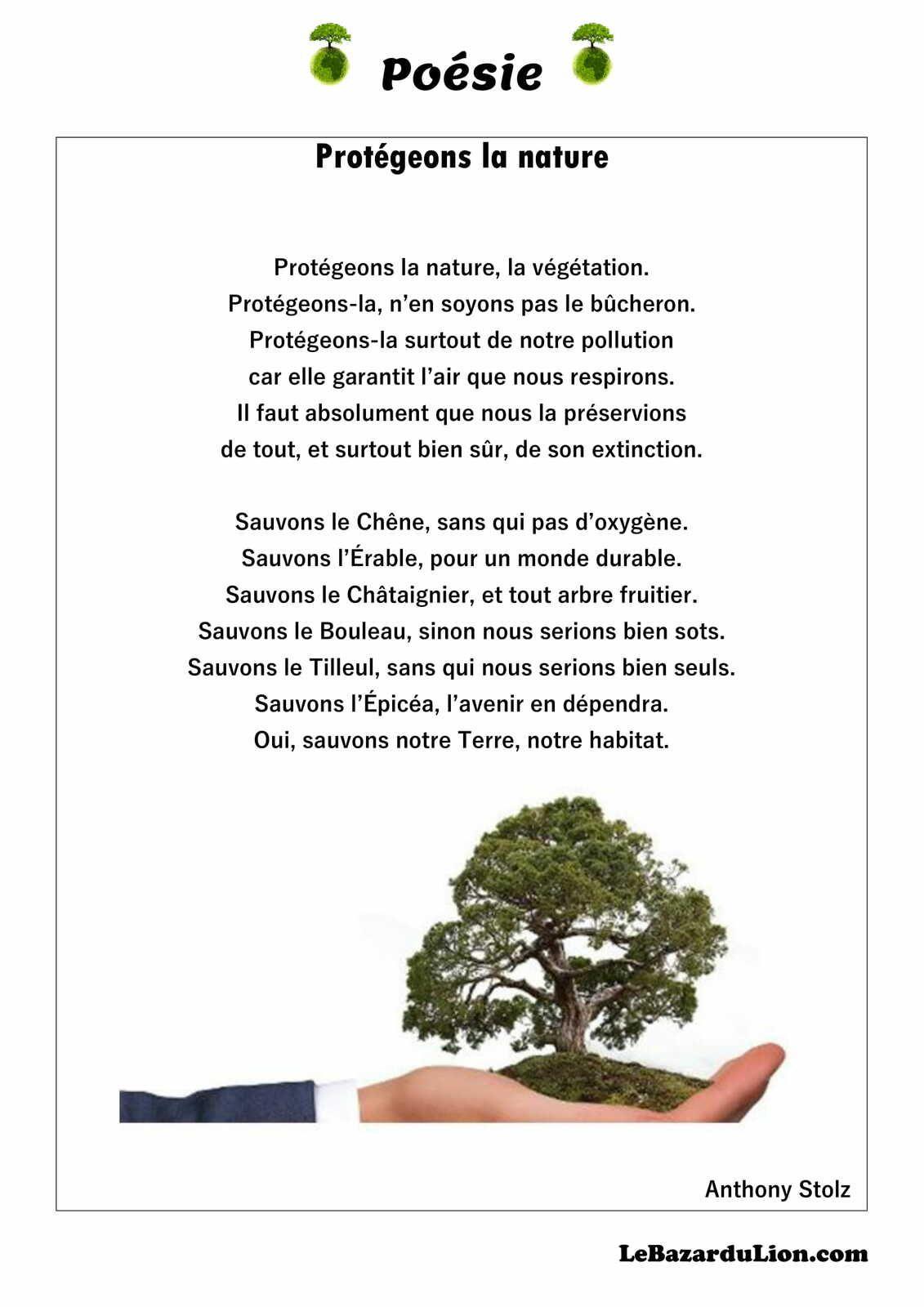 Poésie sur le thème de la protection de la nature (Annexe : le loup qui aimait les arbres) [Poésie][Écologie][MS][GS]