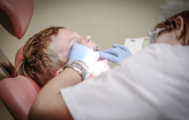 What Are The Best Natural Ingredients For Dental Health?