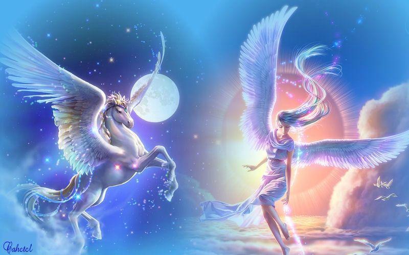 ANGE 65 DAMABIAH : Du 10 Février au 14 Février. Jour 1. 10 Février
