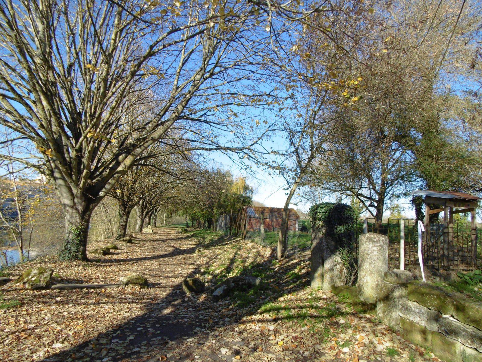 Et bien sûr sur la place Bassompierre... les pierres romaines s'imposent à notre regard (On aime bien nos colonisateurs..... !!!). Avec un regard sur une inscription lapidaire, hélas difficilement déchiffrable.. ... (sauf par une méthode, surtout ici, illégale).