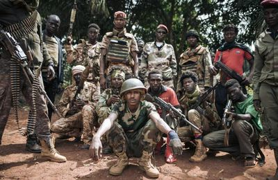 """Centrafrique : un cessez-le-feu unilatéral jugé """"pas viable"""" par les experts et l'opposition"""