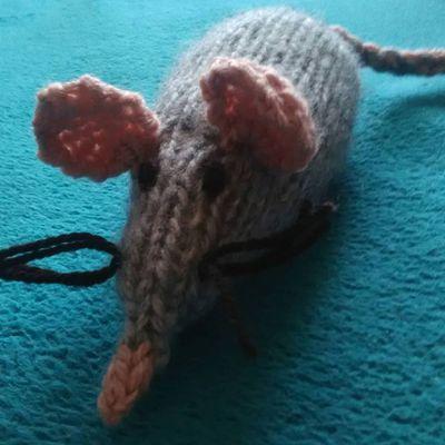 petite souri tricot