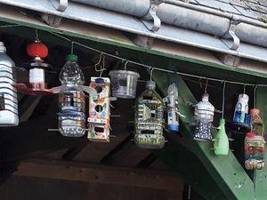 Confectionneur de petits sujets décoratifs à partir d'un rien et transformateur de bouteilles usagées en mangeoire pour les Oiseaux ... (il connaît aussi toute leur vie !!!)
