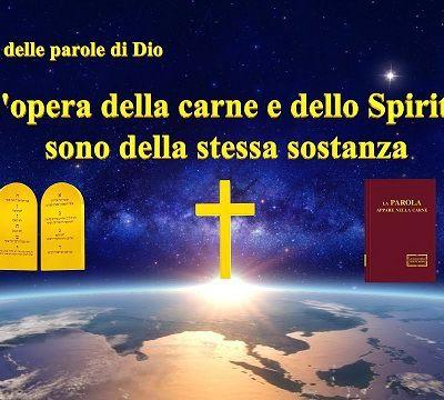 L'opera della carne e dello Spirito sono della stessa sostanza