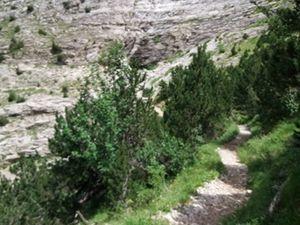 Gavarnie : par le chemin des Espugues