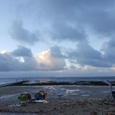 Balade du 25 novembre au bord du Bassin d'Arcachon...