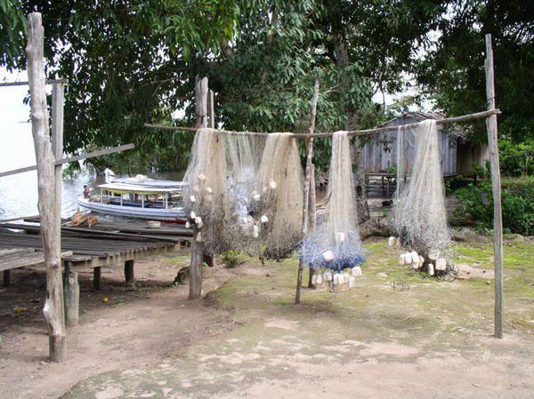 Photos et images de notre périple sur l'Amazone.