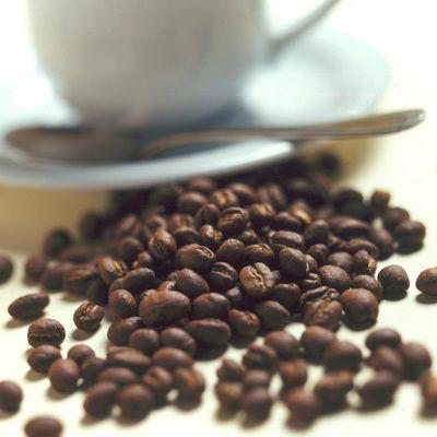 La fiche d'identité du café Malongo
