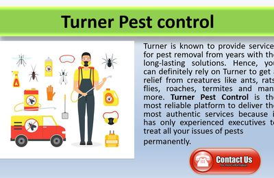 Clean pests and bugs with Turner pest control