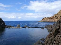 Island of Madeira and the vine