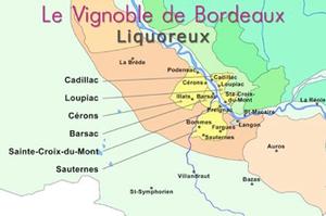 Sites officiels du vin de Bordeaux et du tourisme viticole