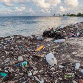 La guerre des pailles : la lutte pour débarrasser les océans du plastique