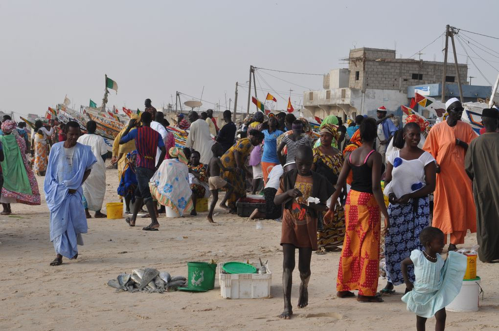 Album - album-photo-Senegal
