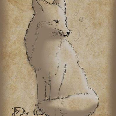 Recherche pour un renard