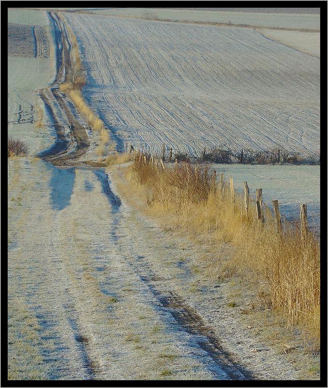 """""""Z'Album"""" : paysages"""
