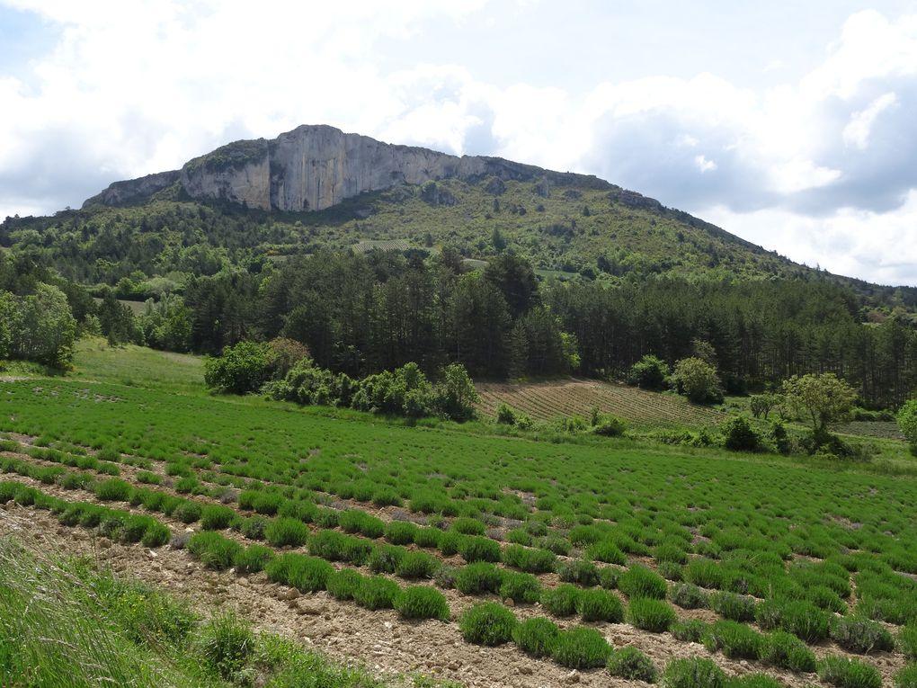 Week-end VTT à Mévouillon (Drôme) le 29 et 30 mai 2021.