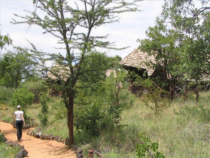 Safari d'une dizaine de jours en Tanzanie... Mars 2005