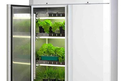 SOME FACETS OF PLANT GROWTH CHAMBER