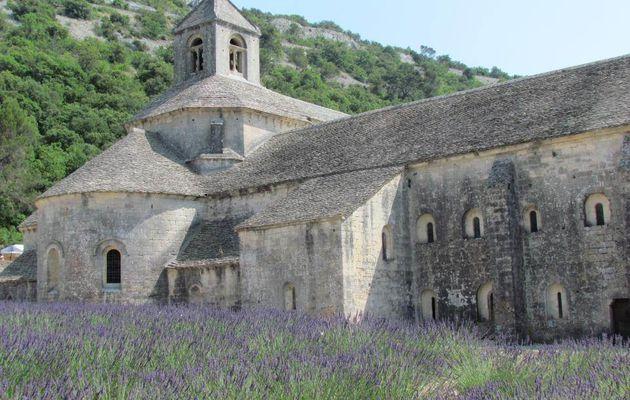Visite de l'Abbaye de Sénanque datant du XIe siècle - 8 juillet 2013