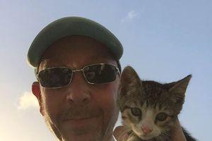NELSON - chaton mâle 2 mois - adopté