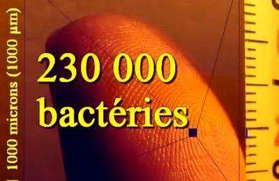 La Terre : une planète à bactéries