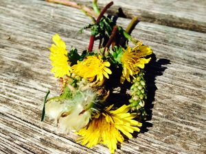 Arrosage en règle des cailloux, de l'herbe...mon 31eme bouquet de fleurs sauvages cet été et chasse aux papillon