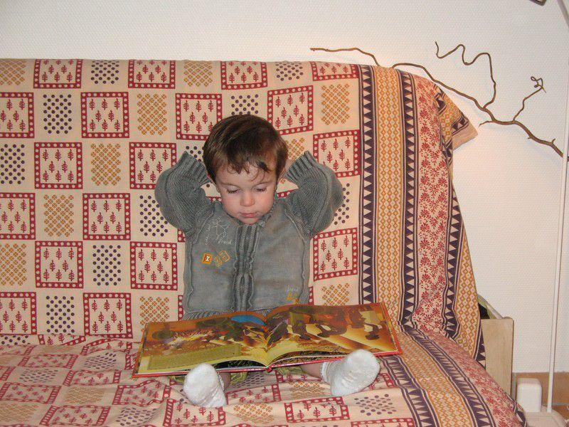 """N.B. : Les photos qui portent le filigrane de """"La Lutinière"""" peuvent être envoyées comme cartes virtuelles à partir de la Carteribambelle.   Voir sur la page d'accueil du site : :  http://www.lalutiniere.com"""