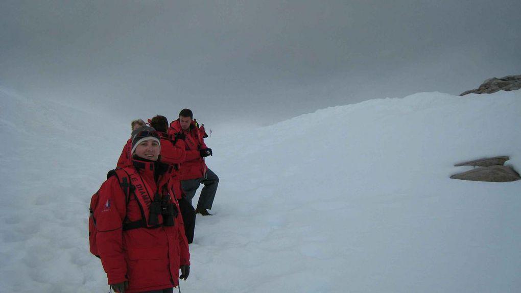 Album - Antarctique-compilation-photos