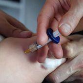 Certaines écoles hors contrat sont des foyers de refus de vaccination