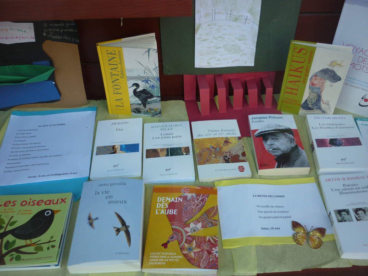 Album - Vitrine de la Librairie Temps-livres