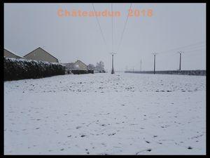 Le Bois des Gâts sous la neige. Châteaudun 2018.