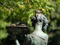 Central Park en ses alentours....le musée Guggenhein