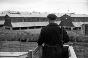 Les internés administratifs de l'Allier (1940-1944)