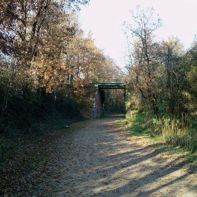 Un pont près du moulin de Troteco.