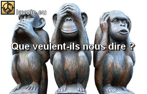 Satsang de sri hans Yoganand ji sur la spiritualité, les trois singes, la méditation, La Voie