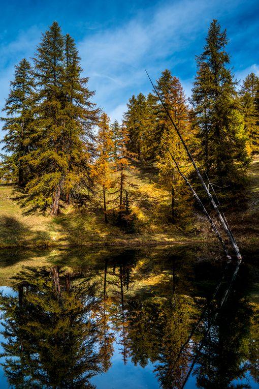 Stages d'automne dans le Queyras