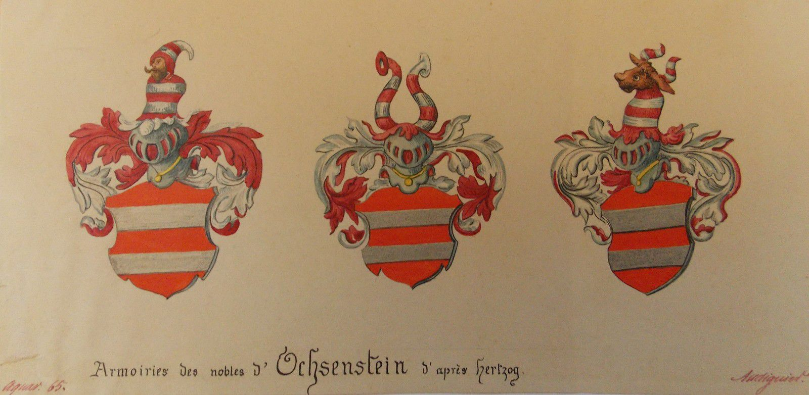 Armoiries des Ochsenstein, aquarelle Emile Audiguier