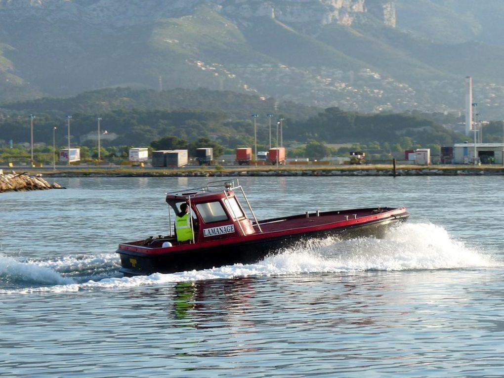 LAMANAGE , vedette du port de Toulon en transit en petite rade de Toulon le 05 juin 2013