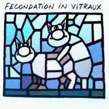 Fécondation in vitraux (Le Chat)