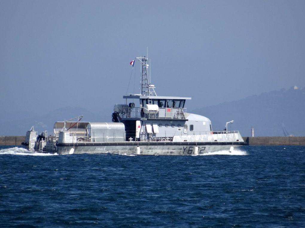 CIGALE , Y622 , Chaland Multi-Missions (CMM) en petite rade de Toulon le 25 avril 2018