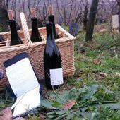 MES COUPS DE COEUR - Emmanuel Delmas, Sommelier & Consultant en vins, Paris