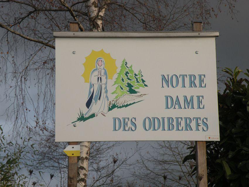 Bois de saint Marc, les Odiberts