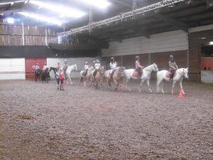 Stage Théatre Equestre Voltige Wattrelos 17-21/07/2017