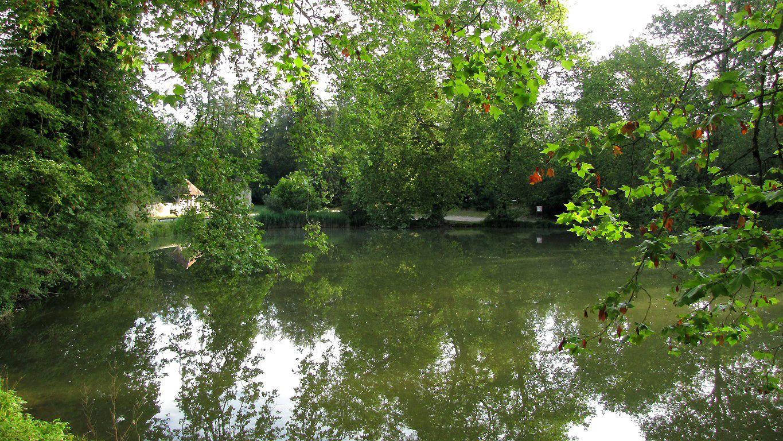 l'étang de Sainte-Perine