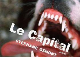 Stéphane Osmont – Le capital
