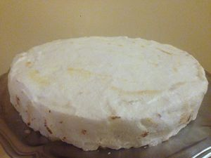 Gâteau glacé aux agrumes