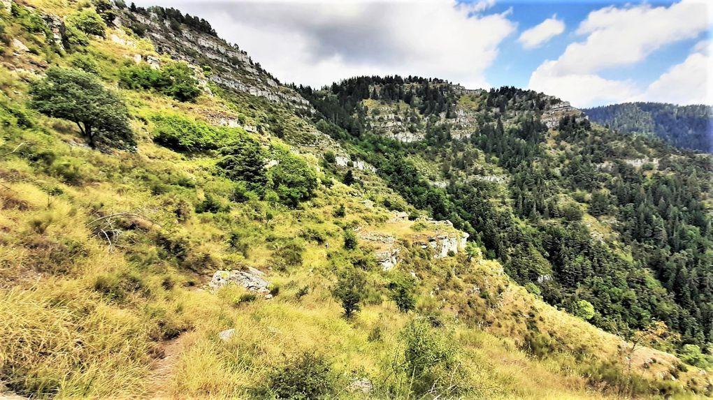 Forêt de la Maîris Suorcas