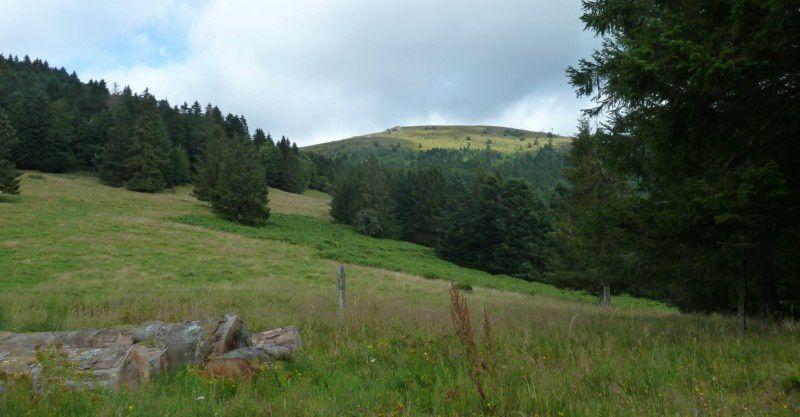 """Sortie """"Oxygénation"""" dans la Vallée de Munster pour l' ASOR de Colmar"""