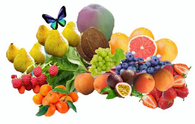 Fruits et papillon, pas à pas 2